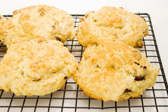 Fruit Scones Fresh and Hot on a Cooling Rack Stock Images