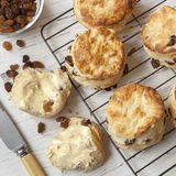 Fruit Scones on Rack Top View Stock Photography