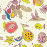 Fruit seamless pattern Stock Photos