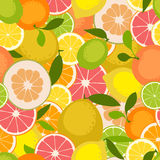 Fruit seamless pattern. Vector illustration Royalty Free Stock Photos