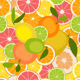 Fruit seamless pattern. Vector illustration Stock Photo