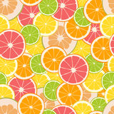 Fruit seamless pattern. Vector illustration Royalty Free Stock Image