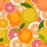 Fruit seamless pattern. Withcitrus fruits. Vector illustration Stock Photo