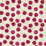 Fruit seamless wallpaper - cherry berries. Watercolour Stock Photos