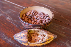 Fruit and seeds of the cacao tree Royalty Free Stock Photo