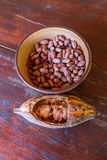 Fruit and seeds of the cacao tree Stock Photography
