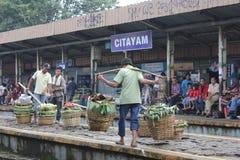 Fruit Seller Stock Image