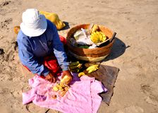 Fruit seller at goa beach. Image showing a fruit seller at one of the beach at Goa, India. Such fruit seller provide banana, coconut water, watermelon, pineapple Stock Photography
