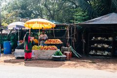 Fruit seller in India. Fruit Seller scene in Goa, India Stock Photo