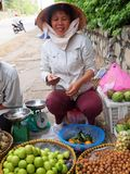 Fruit Seller in Vietnam. A fruit seller doing business by the roadside in Vung Tau, Vietnam Royalty Free Stock Images