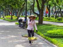 Fruit Sellers in the Streets of Hanoi. Stock Image