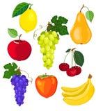 Fruit set. Set of eight fruit. Isolated on white. Vector illustration Royalty Free Stock Photo