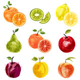 Fruit set 2 Royalty Free Stock Image