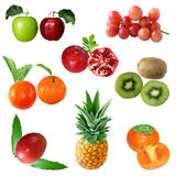 Fruit Set Stock Photography