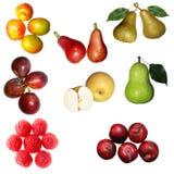 Fruit set Stock Photography