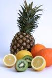 Fruit Set. Kiwi, lemons, oranges and pineapple stock image