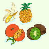 Fruit set. apelsni, kiwi, banana and pineapple Royalty Free Stock Image