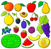 Fruit set with black outlines. Fruit set, each in separated layer. With black outlines, without gradients. Vector illustration Stock Image