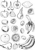 Fruit set doodles Stock Photography