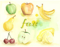 Fruit set drawn watercolor. Painting on white background Stock Images