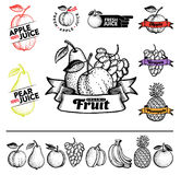 Fruit. Set of fruit and elements in vintage style for labels and badges for drinks, bar menu or shop Royalty Free Stock Photo