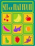 Fruit Set Flat Royalty Free Stock Image