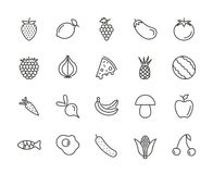 Fruit set icon vector. Outline fresh food collection. Trendy thin line style, web illustration. Web icon royalty free illustration