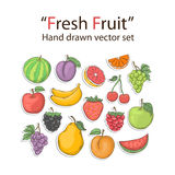 Fruit set isolated. On a white background in doodle style Royalty Free Stock Image