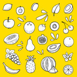 Fruit set. Jucy fruit set, hand drawn Stock Photos