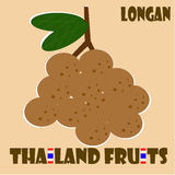 Fruit set : Longan from Thailand. Longan is one of popular fruit of Thailand Royalty Free Stock Photo