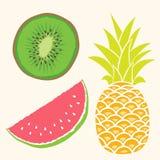 Fruit set. Mango, watermelon, pineapple Stock Photography