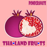 Fruit set : Pomegranate from Thailand. Pomegranate is sweet and sour fruit. Its colour is clear and bright like Ruby Stock Images