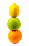 Fruit set in a row. Royalty Free Stock Photography
