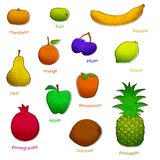 Fruit set with texture (vector) Stock Photo