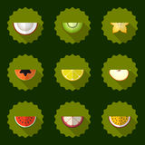 Fruit set vector background, Include apple Stock Images