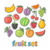 Fruit set. Vector hand draw in doodle style health food isolated on a white background. Fresh fruits collection Stock Image