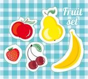 Fruit set, vector illustration. Fruit set on blue background, vector illustration stock illustration