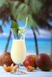 Fruit shake cocktail Stock Image
