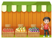 A fruit shop with a young boy wearing a red shirt Royalty Free Stock Photo