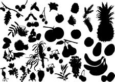 Fruit silhouettes set Royalty Free Stock Images