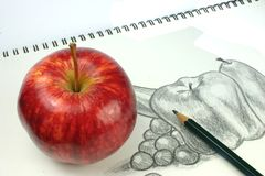 Fruit Sketch Royalty Free Stock Image