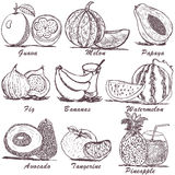 Fruit sketch 2 Royalty Free Stock Images