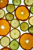 Fruit slices. Oranges, lemons and limes Stock Photos