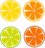 Fruit slices Stock Photo
