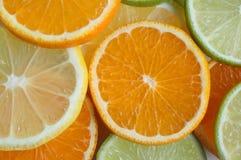 Fruit Slices. Mandarin, lemon and lime slices royalty free stock image