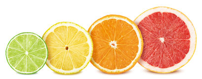 Fruit slices set: lemon, lime, orange and grapefruit. Isolated on white royalty free stock images