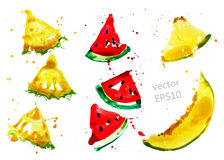Fruit slices set Stock Image