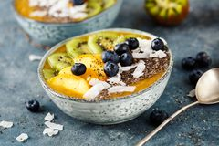 Fruit smoothie in bowl. Royalty Free Stock Photo