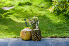 Fruit smoothies from pineapple and coconut on a background of green grass Royalty Free Stock Image