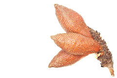 The Fruit With Snake Skin Stock Photo